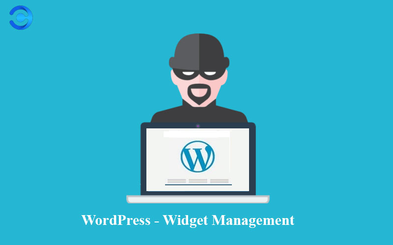 How to Widget Management in WordPress