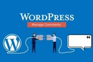 comments in WordPress