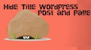 Hide Title WordPress Post and Page